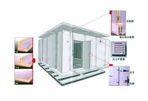 专业制作冷库,山东绿特空调系统有限公司
