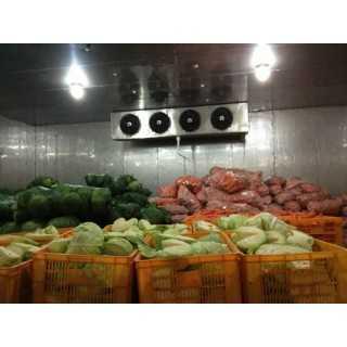 供应邢台蔬菜冷库,邢台市扬丰制冷设备销售有限公司