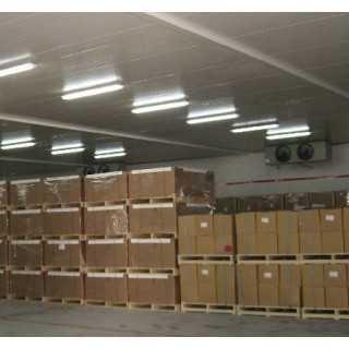 漳州厦门低温种子保鲜冷藏库,厦门立亚实业有限公司