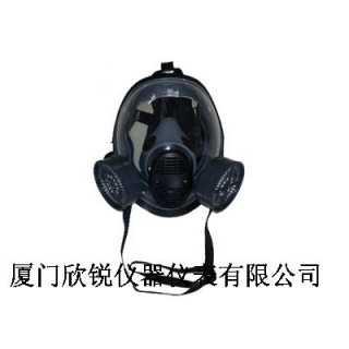 BW-5000球形双滤盒全面罩防毒面具,厦门欣锐仪器仪表有限公司