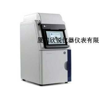 美国GE600超灵敏多功能成像仪,厦门欣锐仪器仪表有限公司