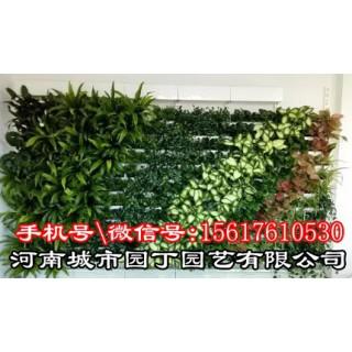 郑州护坡垂直绿化-河南郑州垂直植物墙制作|围挡立体,河南城市园丁园艺有限公司